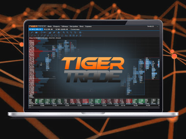TigerTrade логотип